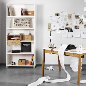003 - COW Bookshelf - Imago 2